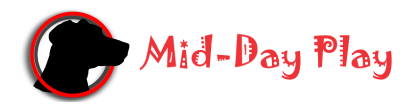 Mid-Day Play Pet Services Logo